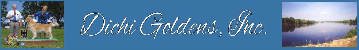 Dichi Goldens